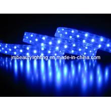 LED Strip Light 3 Wires LED Rope Light (Flat Shape)
