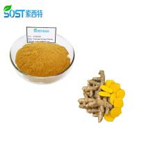 SOST Biotech Wholesale Bulk Organic Price Turmeric Curcumin