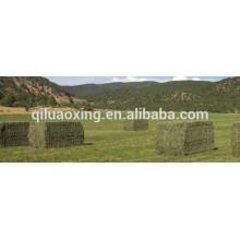foin de balle de foin d'ensilage pour l'agriculture