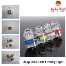 Sob a luz de LED de pesca de água