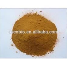 Melhor Preço Grau Alimentício Chinês Goldthread raiz extrato Em Pó 6% berberine