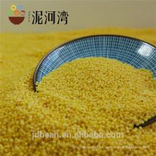 Broom Corn Millet Hulled en venta