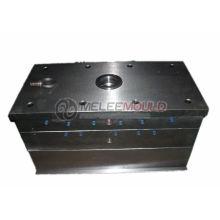 Plastikschutz-Spritzen / Form (MELEE MOULD -274)