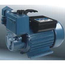 Pompes à vortex auto-amorçantes (25ZB)