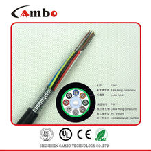 PE oder LSZH Jacket-Kabel 24 Core Fiber Optic Preis im Optical Access Network (OAN)