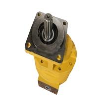 SEM Hydraulische Zahnradpumpe W066900000B