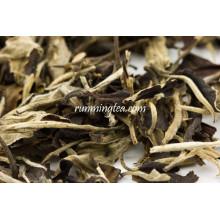 Antiga Árvore Imperial Branco Lua Luz Jinggu Melhor Chá Branco Testado EU Standard