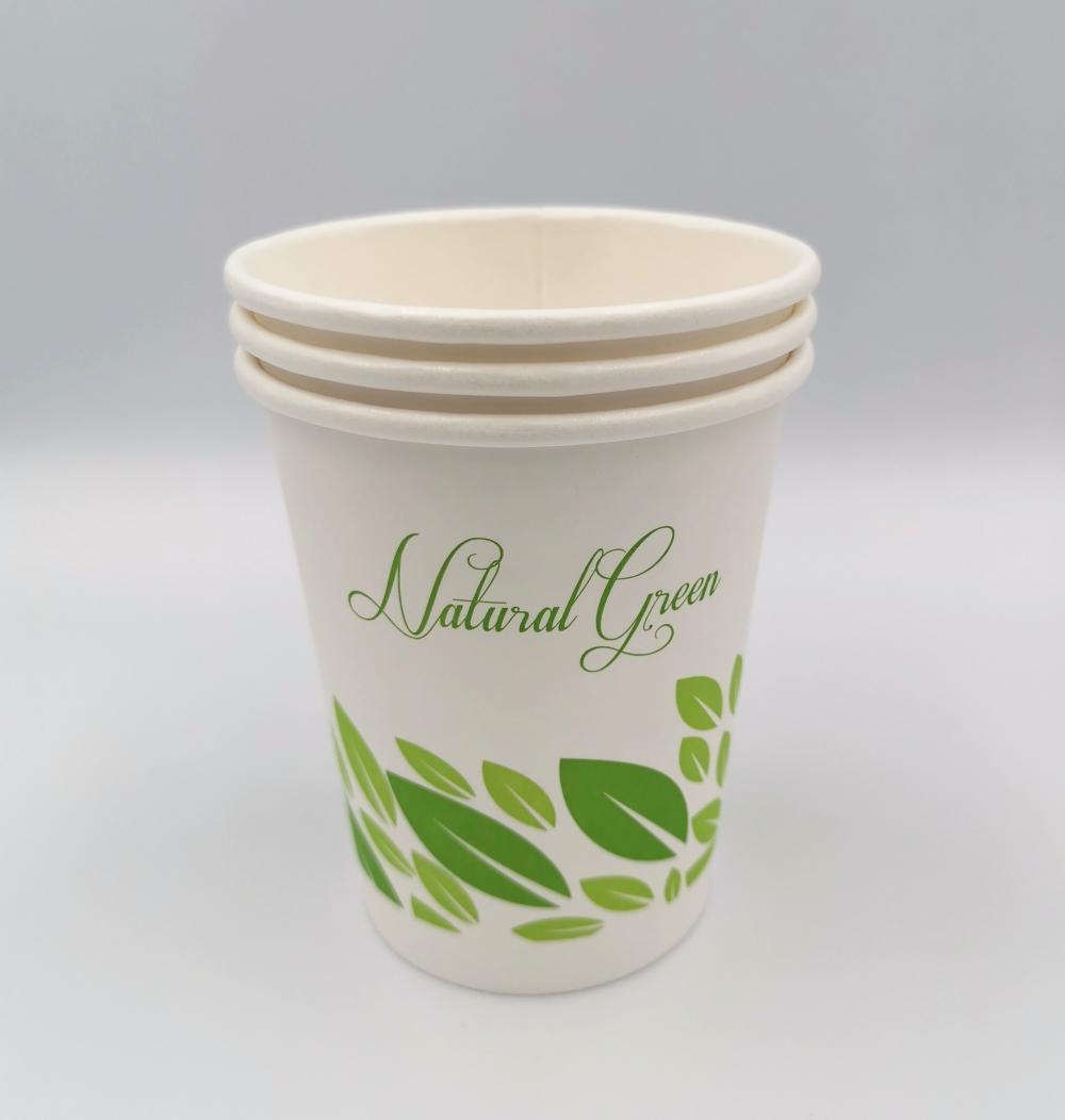 PLA Compostable Paper Cup 10oz