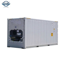 10ft Reefer Container With Refrigeration Unit