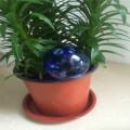 Watering Globes