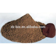 Polvo de Ganoderma Lucidum orgánico