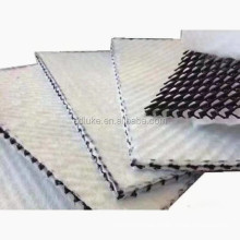 China supplier best Geocomposite Drainage Net for landfill drainage