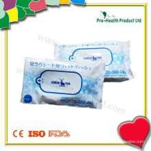 Wet Wipes in a Plastic Bag (PH734A)