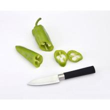 Couteau à fruits en acier inoxydable à poignée souple