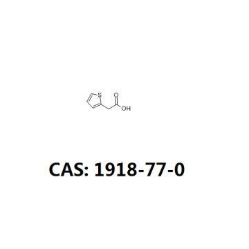 Thiopheneacetic acid pharmaceutical intermediate 1918-77-0