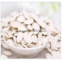 Nueva planta china de las semillas de calabaza de la nieve blanca del cultivo