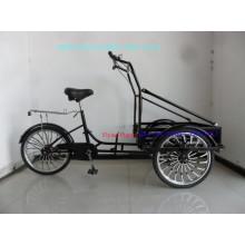 Nuevo triciclo de helado desarrollado
