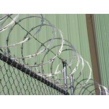 Hot-Dipped Razor Tape Wire Net (DPCS02)