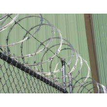 Hot-Dipped Razor Tape Wire Net (DPCS02)
