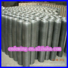 Algeria Zinc coated welded wire mesh Roll fencing