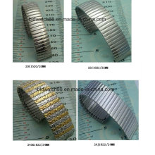 Fornecedor de banda de relógio de aço inoxidável