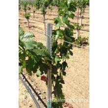 Vineyard metal step in post