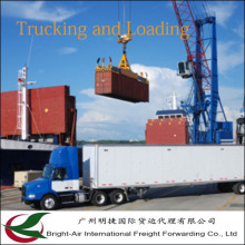 Logistics Service Ocean Shipping Company Contanier From China to Worldwide