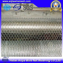 Zinc Galvanized / PVC Coated Chicken Mesh Fence