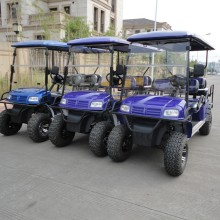 Factory price wholesale gas powered golf cart
