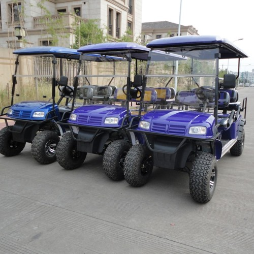 6Seats Electric Golf carts dengan CE