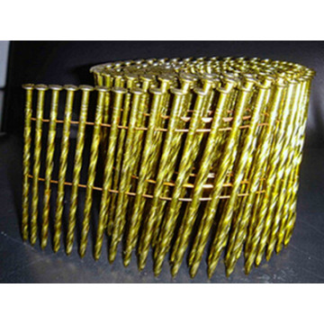 Hot Sale Common Coil Nail
