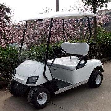 PP material  electric golf cart