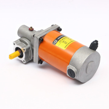Worm Gear 24V 80W Frame 80mm DC Motor
