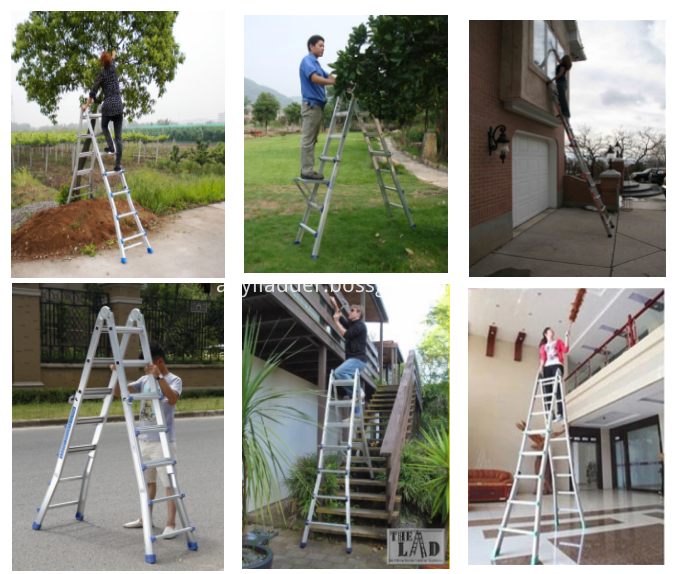 Folding Little giant ladder
