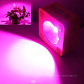 75W Best Sellers High Quality Hydroponics Plant Lamp