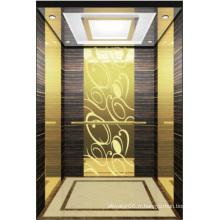 Ascenseur de l'ascenseur Hight Quality Hl-X-023