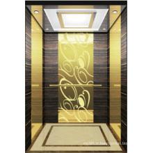 Ascenseur élévateur pour passagers Hight Qualité Hl-X-023