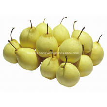 2018 new crop ya pear