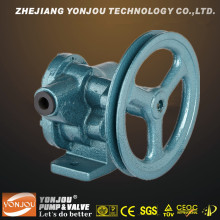 Bp Light Belt Pully Gear Pump