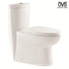 Toilettes WC Sols au sol Salle de bains Toilettes 1 pièce