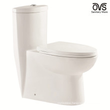 WC Toilet Floor Stand Bathroom One Piece Toilet