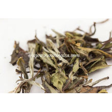 Yue Guan Bai white tea