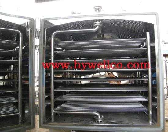 Vegetable Chips Vacuum Tray Drier