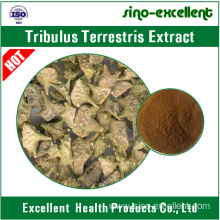 Good Quality for Green Coffee Bean Extract Tribulus terrestris extract with saponins supply to Rwanda Manufacturers