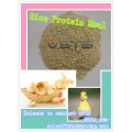 Repas de protéine de riz de vente chaude