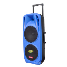 Double 10′′ Inch Professional DJ Speaker with Bt Microphone F73