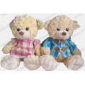 Peluche Teddy Bear, peluche enregistrable