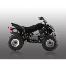 110cc quad-1 bike