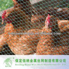 Anping suministro de pollo de malla de suministro de fábrica directa