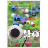 Blueberry Extract Anthocyanin 1%, 25 by UV%